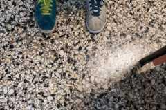 Scarpe spaiate
