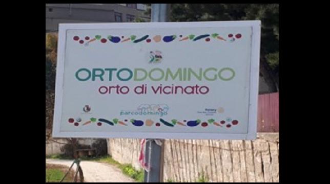 REPORTAGE: L'orto Domingo