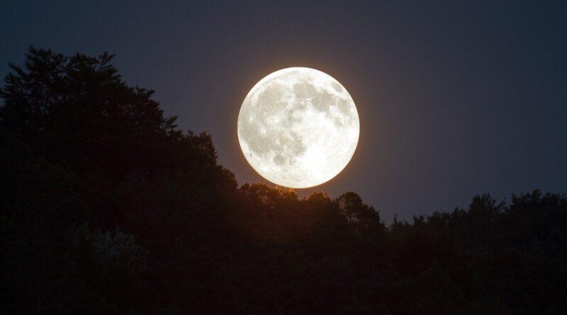 Ultime notizie dallo spazio: scoperta l'acqua sulla luna