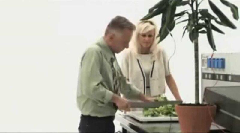 Cleve Beckester: la scoperta dell' intelligenza delle piante e la sua storia